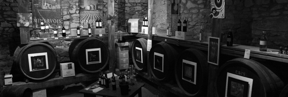 Tasting cellar
